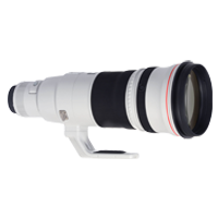 New Canon EF 500mm f/4L IS II USM Lens