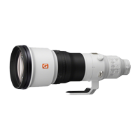 New Sony FE 600mm F4 GM OSS Lens